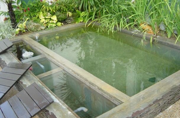 Ultrapure singapore photo gallery koi pond for Above ground koi fish pond